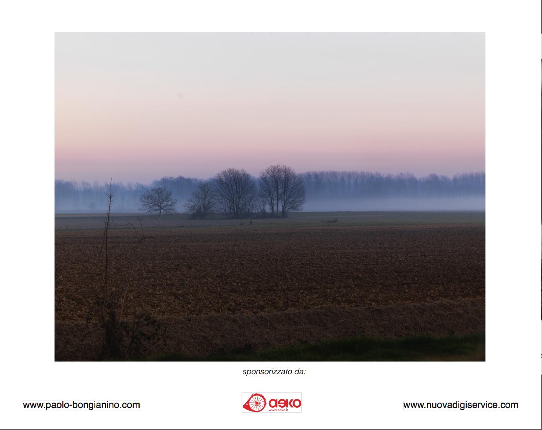 Natura nella città che cambia – La nebbia, fotografia di Paolo Bongianino...