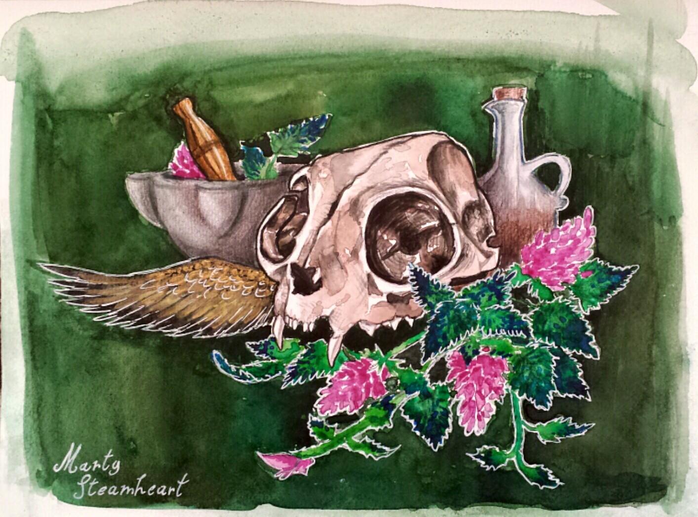 Natura moerta con teschio di gatto, dipinto di Martina Gargiulo / Steamheart Illustrations