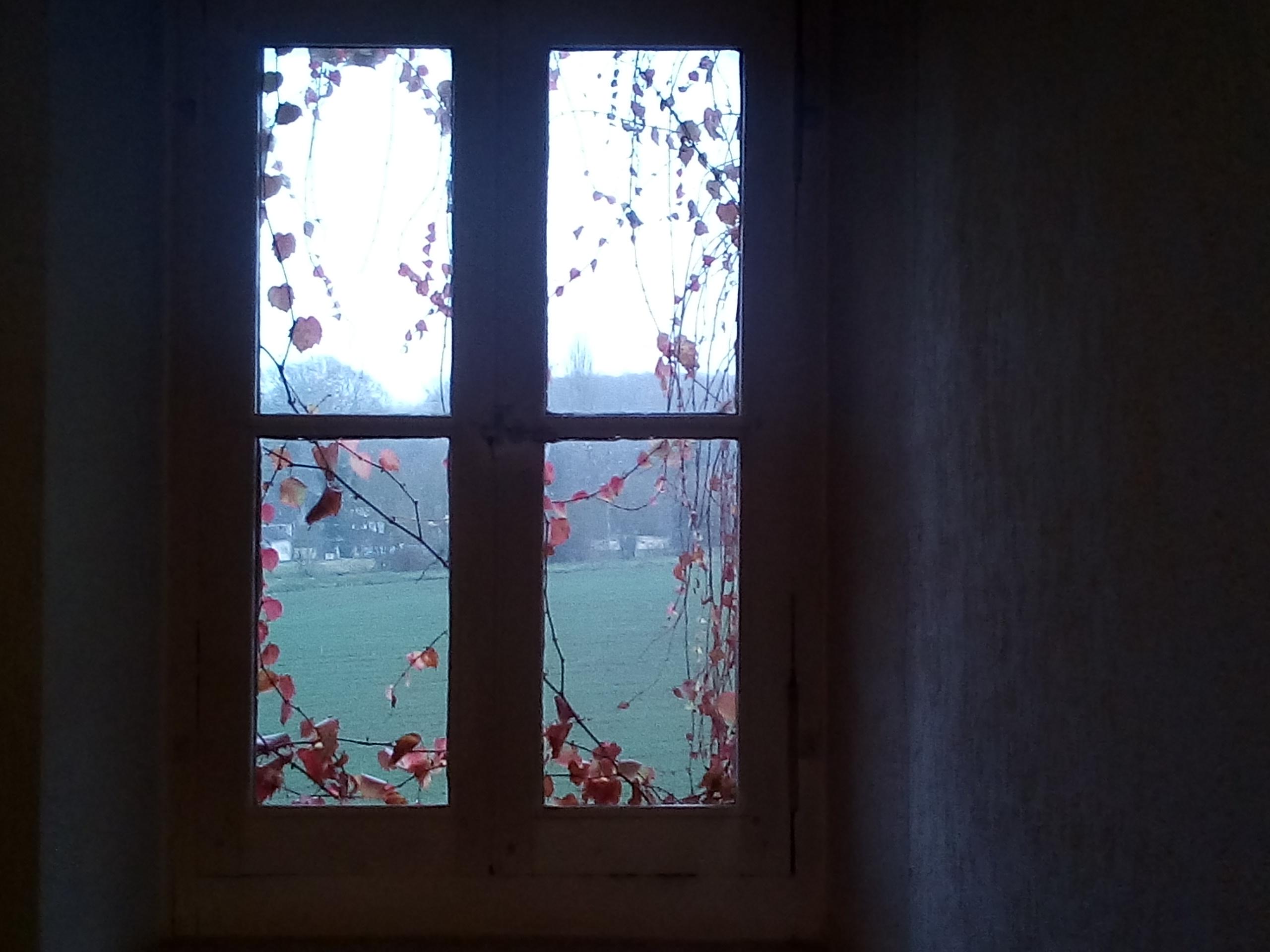La finestra, fotografia di Paolo Bongianino